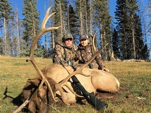 Hunt Northern New Mexico Elk